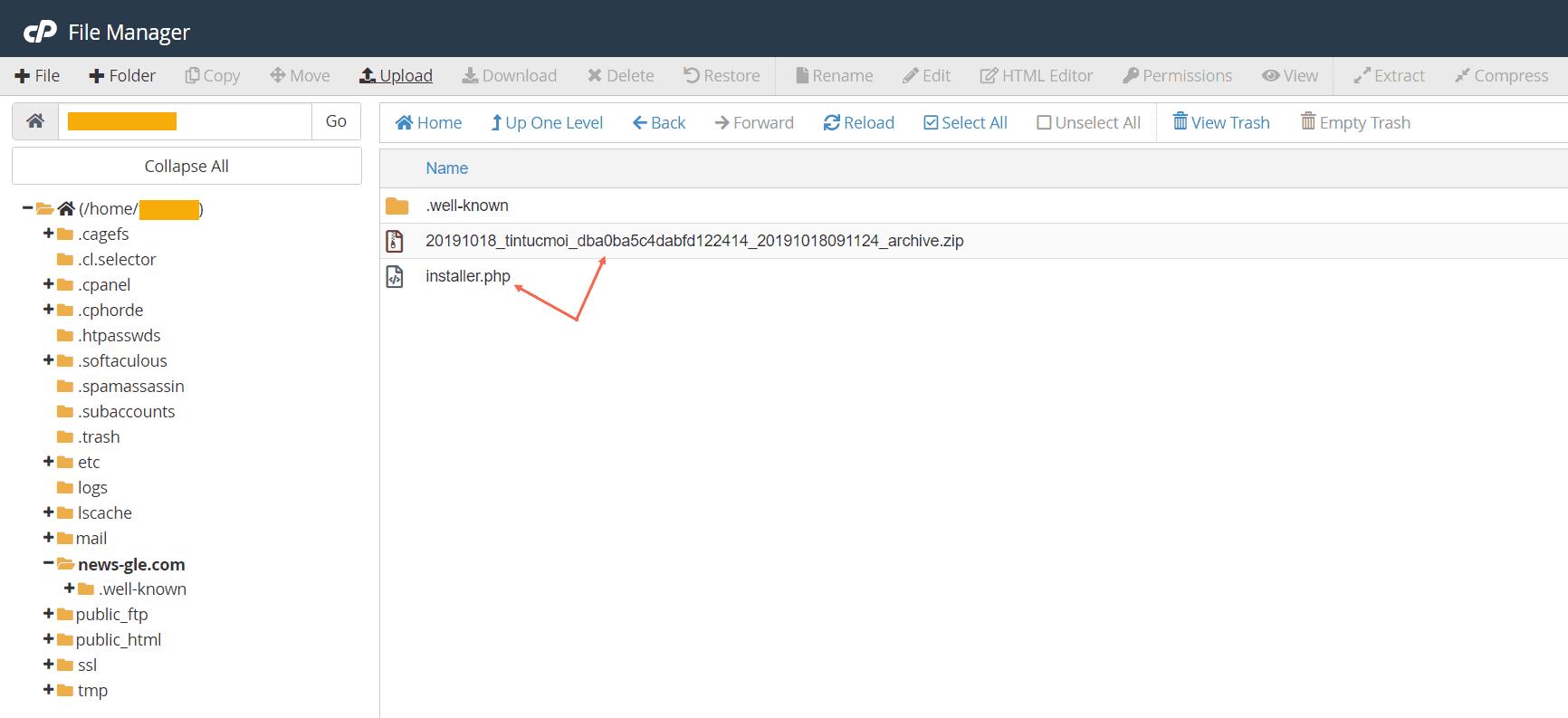 chuyển website sang tên miền mới